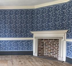 The Washingtons and the Blue Room