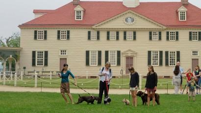 All the President's Pups Walking Tour
