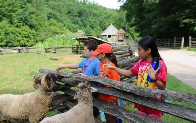 Camp Washington: Summer Day Camp at Mount Vernon