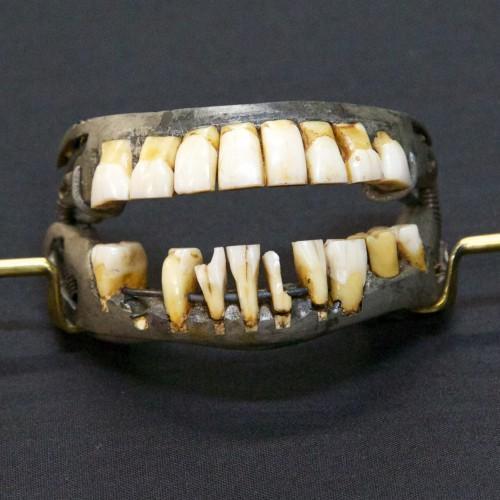 George Washingtons Teeth George Washingtons Mount Vernon