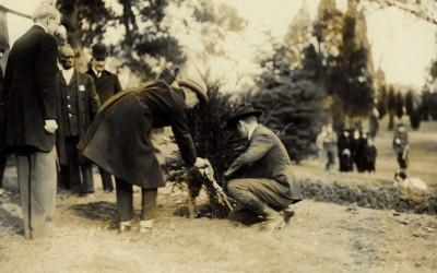 The Prince of Wales planting a tree at Mount Vernon, 1919