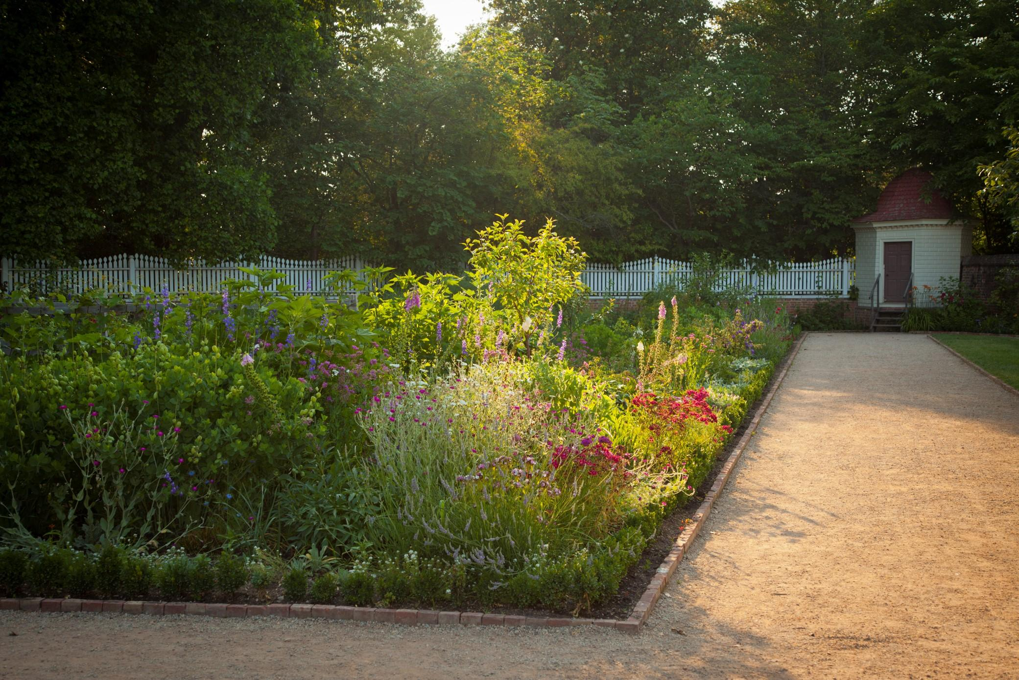 Morning sunlight highlights colorful beds in George Washington's upper garden with seed house in the background, 2012. Photo by John Henley.
