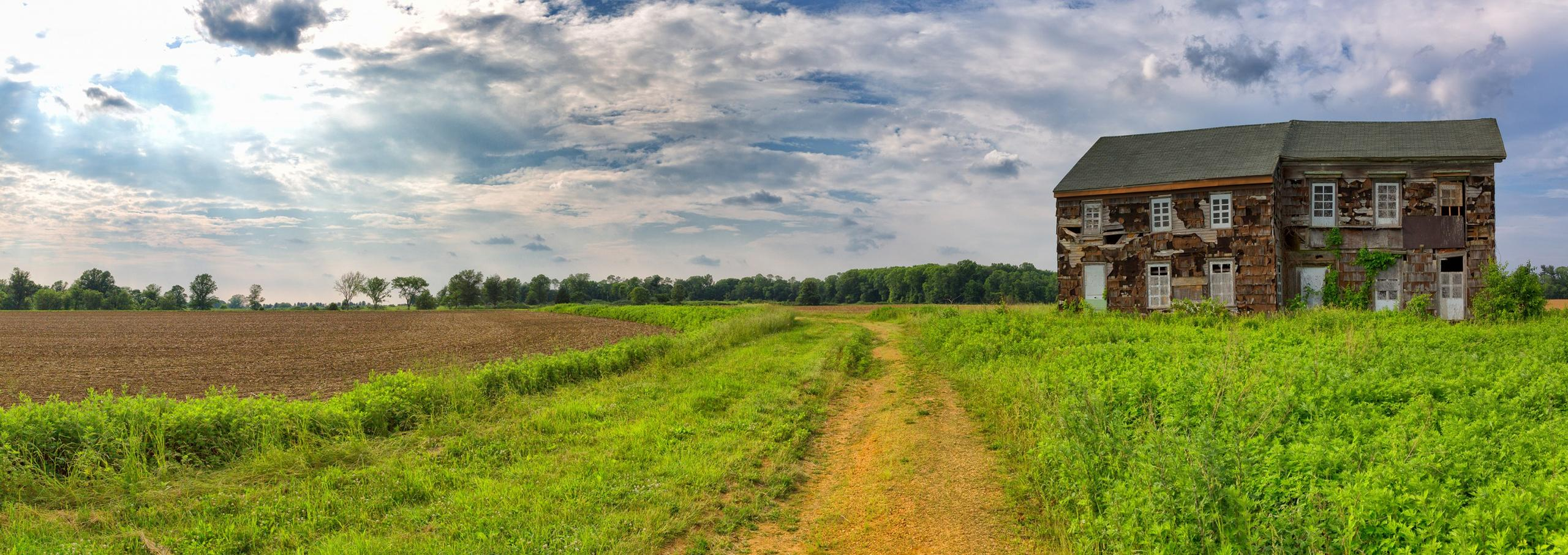 View across the Sutfin Farm towards the American artillery positions on Perrine's Hill.  (Rob Shenk - MVLA)